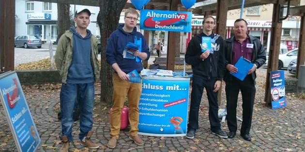 JA im Wahlkampf: Infostände in Rastatt, Korb und Nürtingen